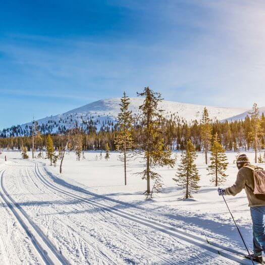 Tamarack cross country ski area offers world-class groomed trails for all experience levels