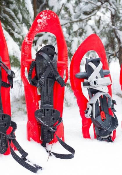Experience thousands of acres of forest on snowshoes so the whole family can enjoy
